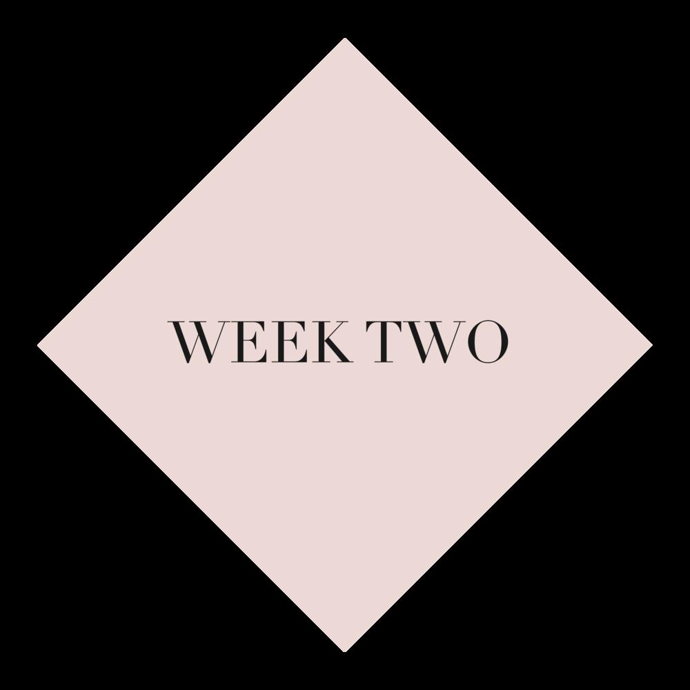 week 2.png