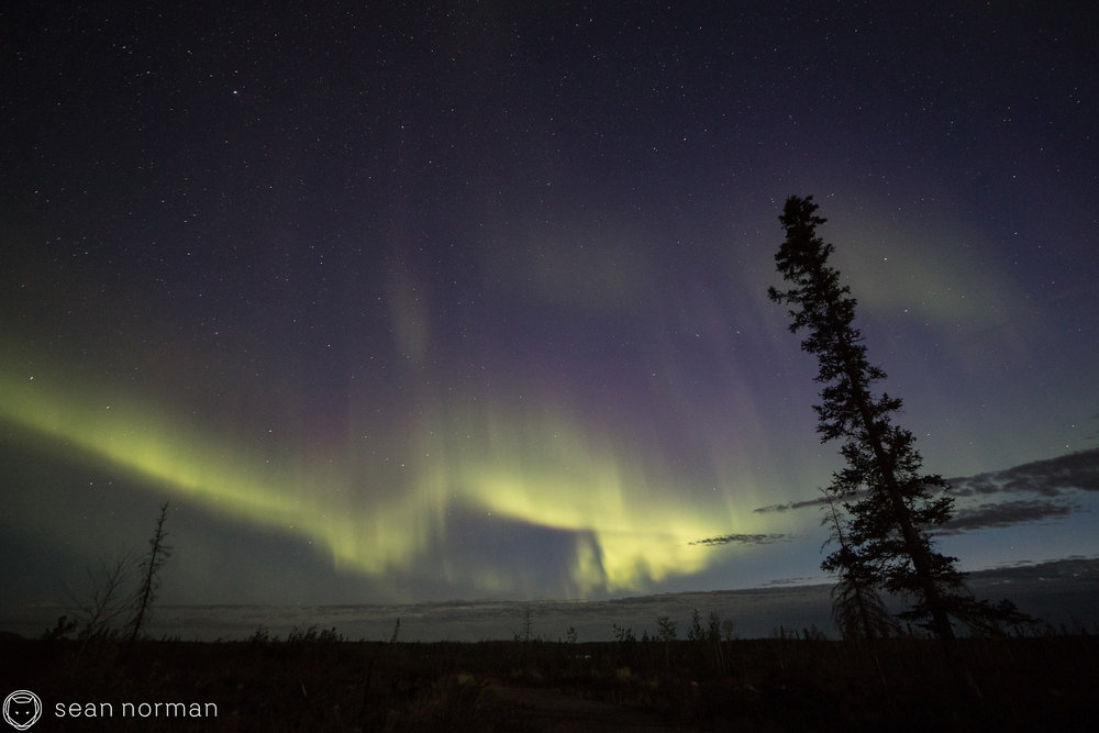 Yellowknife Aurora Tour - Sean Norman - Autumn Aurora - 4.jpg
