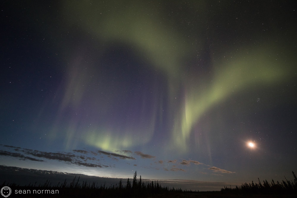 Yellowknife Aurora Tour - Sean Norman - Autumn Aurora - 5.jpg