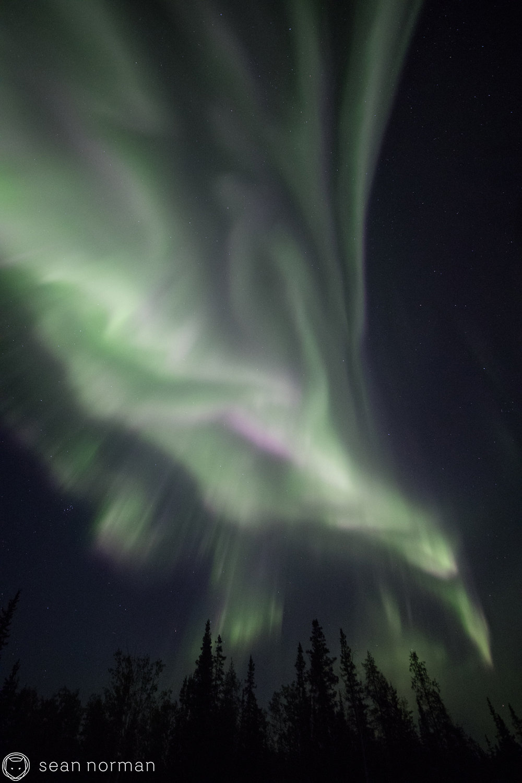 Yellowknife - Aurora Viewing Tour with Sean Norman - 8.jpg