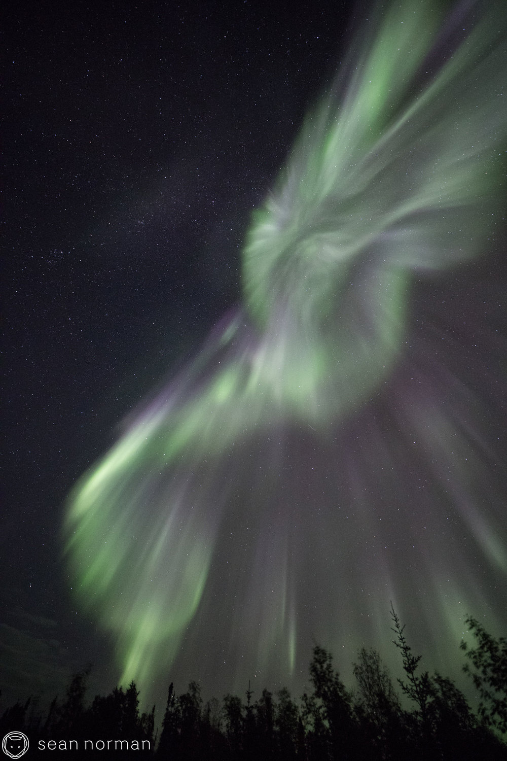 Yellowknife Aurora Chasing Tour - 8.jpg