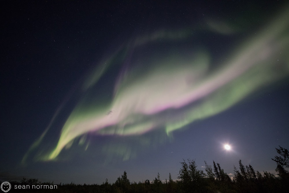 September Aurora Yellowknife - Sean Norman Blog - 2.jpg