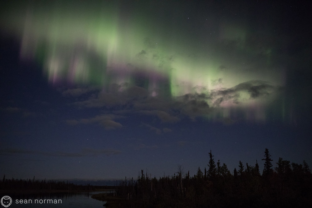September Aurora Yellowknife - Sean Norman Blog - 5.jpg
