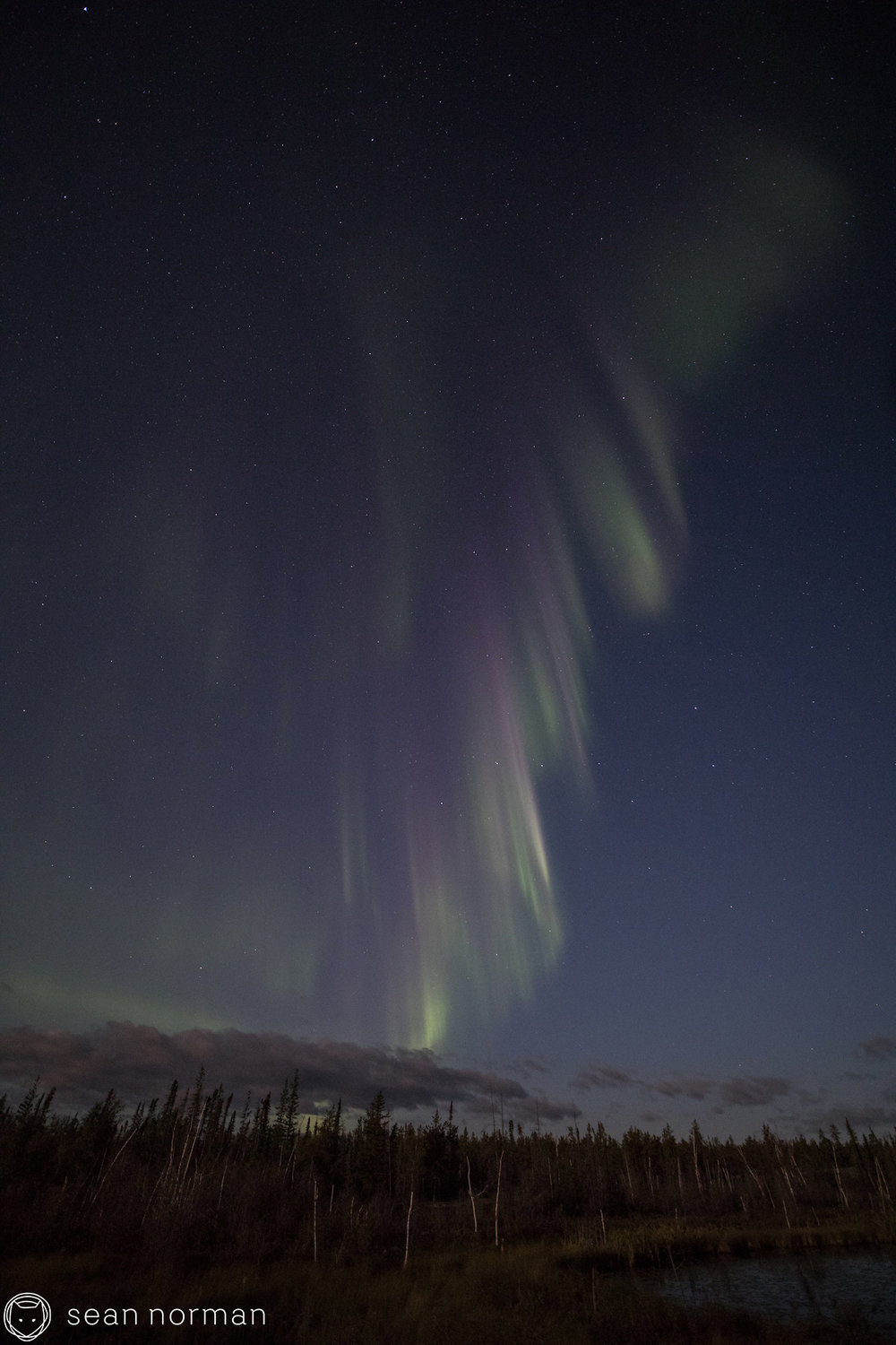 September Aurora Yellowknife - Sean Norman Blog - 7.jpg
