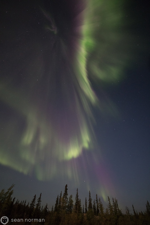 Yellowknife Northern Lights Tour - Sean Norman Blog - 5.jpg