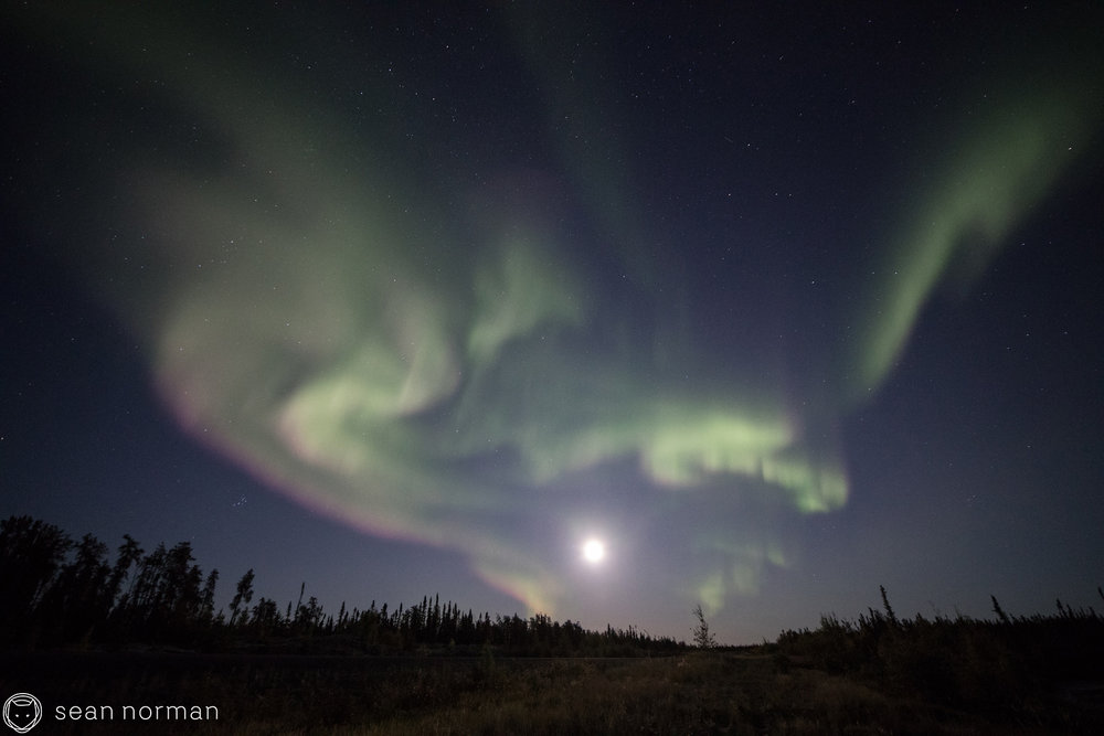 Yellowknife Summer Aurora - Aurora Guide - 2.jpg