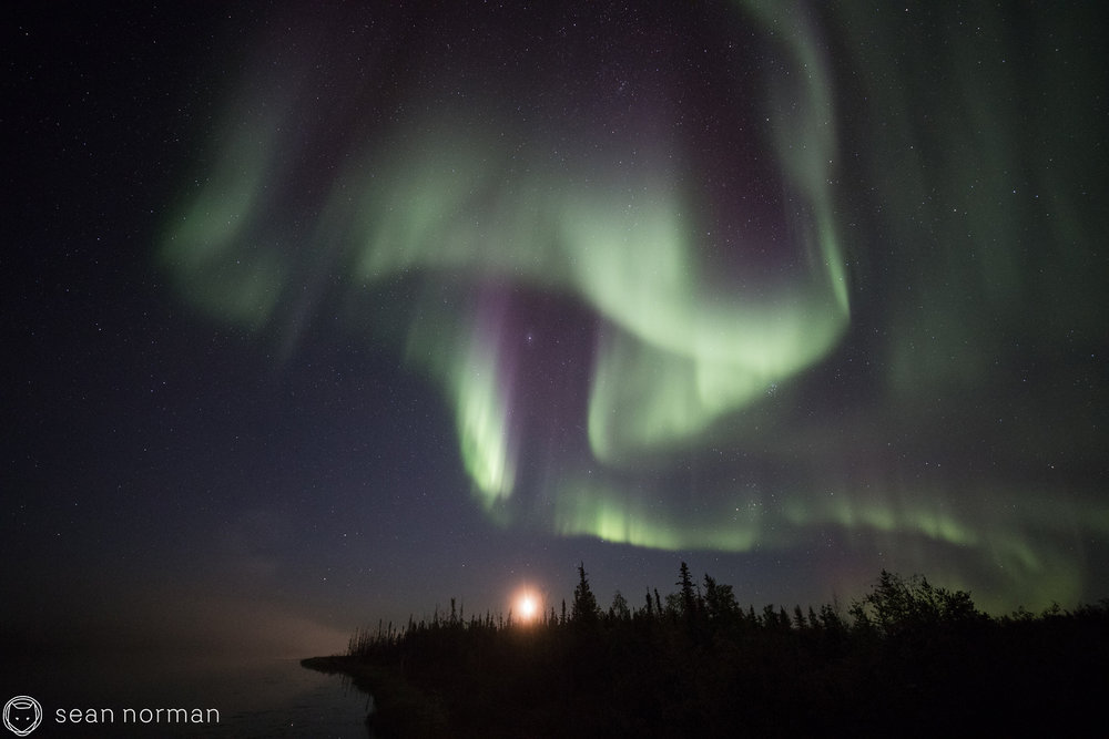 Northern Lights Photo Blog - Yellowknife Aurora Chaser - 7.jpg