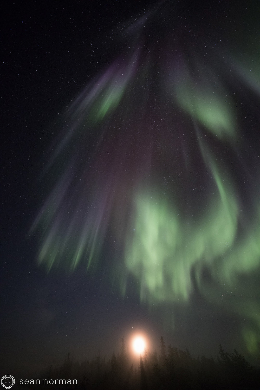 Northern Lights Photo Blog - Yellowknife Aurora Chaser - 8.jpg