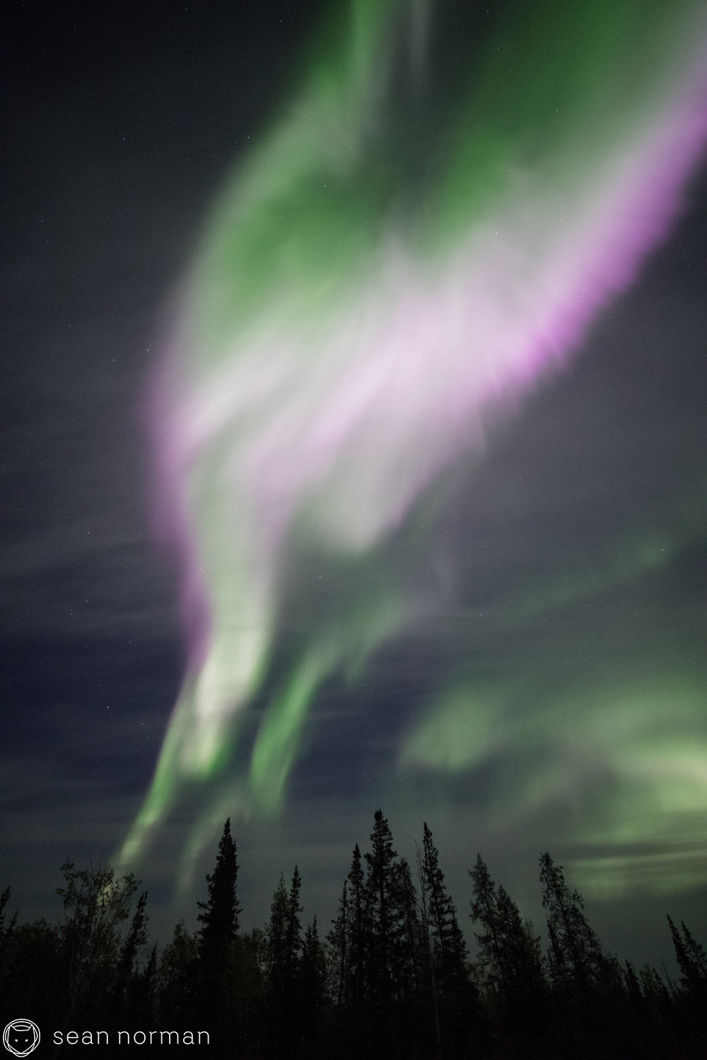 Yellowknife Aurora Blog - Sean Norman Guide - 4.jpg