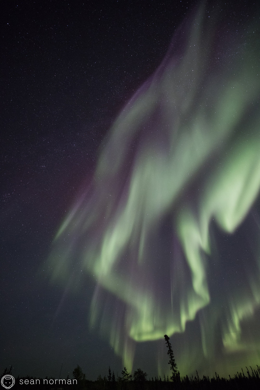 Yellowknife Northern Lights Tour - Aurora Guide - 2.jpg