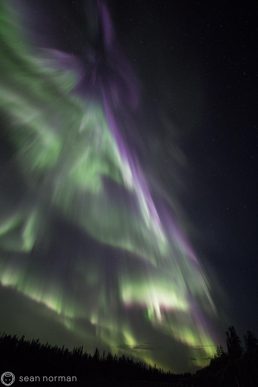 Yellowknife Northern Lights Tour - Aurora Guide - 5.jpg