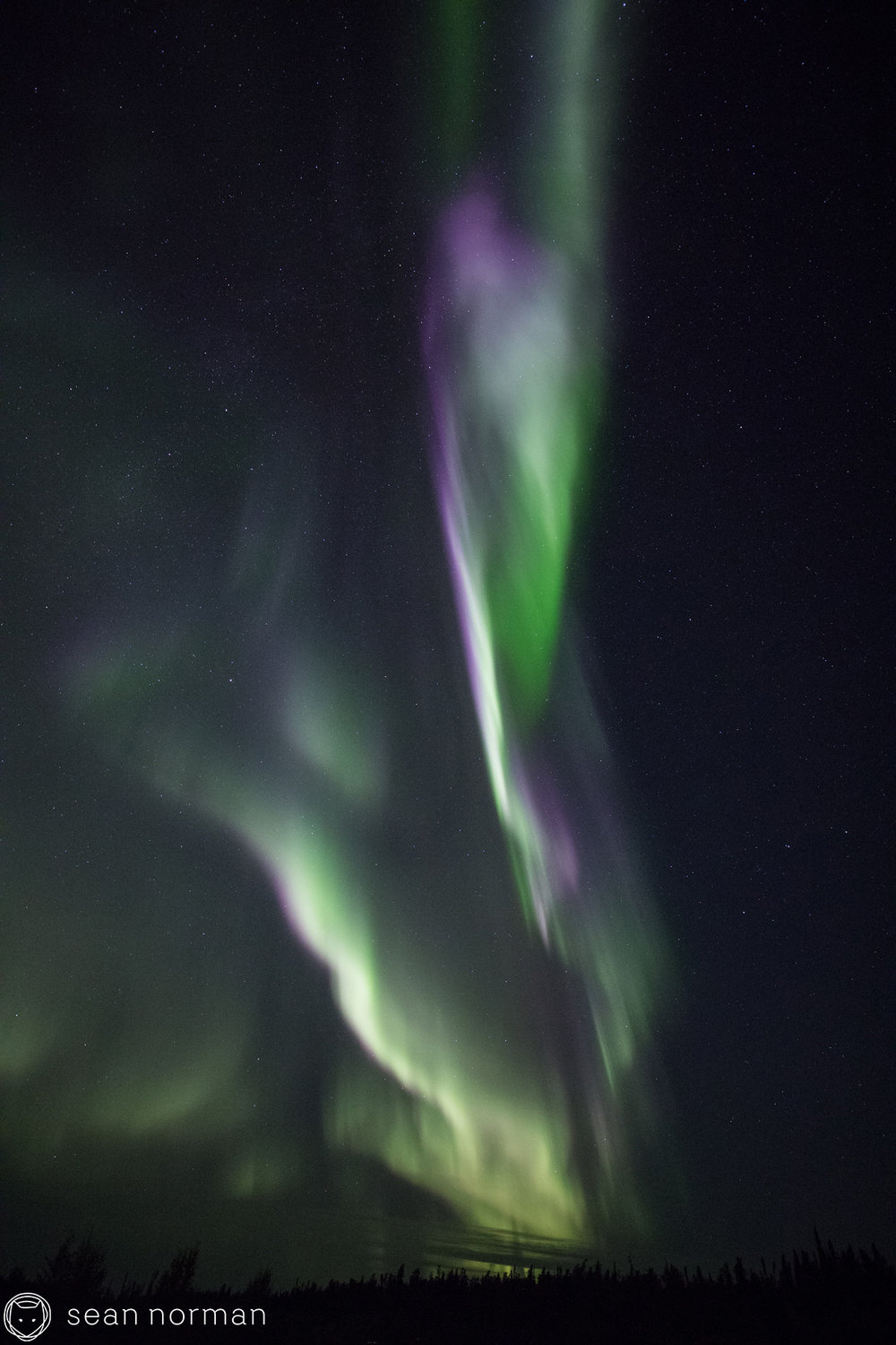 Yellowknife Aurora Borealis Blog - Northern Light Tour Guide - 5.jpg