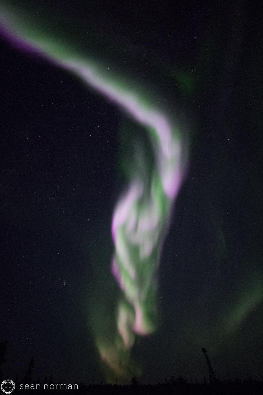 Yellowknife Aurora Blog - Sean Norman - 4.jpg
