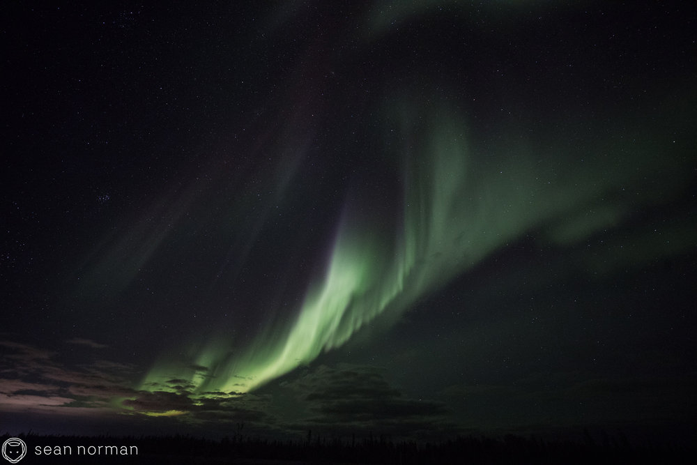 Yellowknife Aurora Tour Blog - Sean Norman - 4.jpg