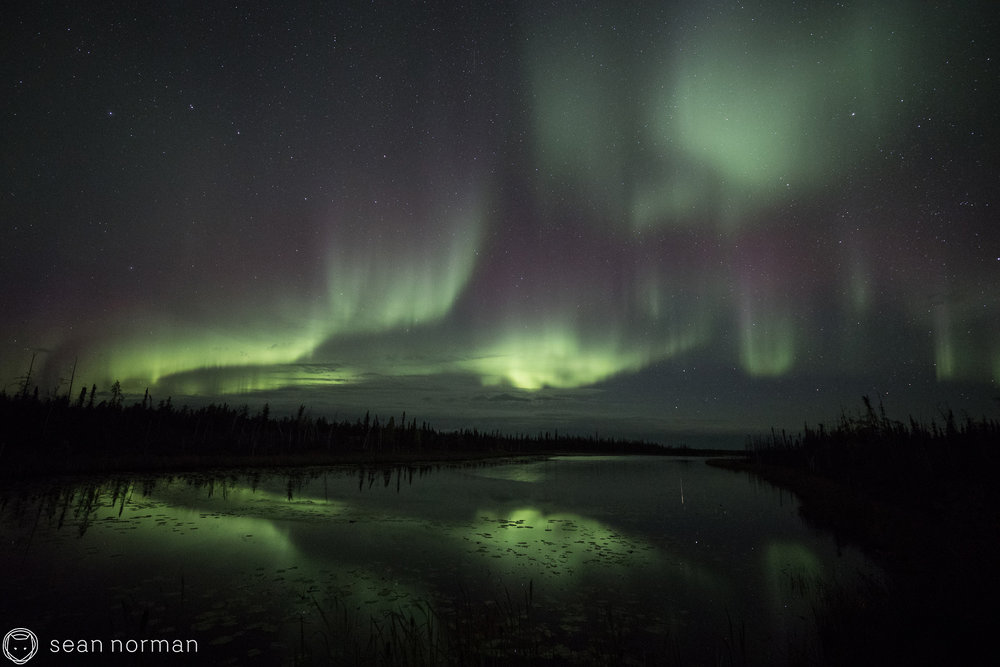 Yellowknife Aurora Photo Blog - Sean Norman Guide - 3.jpg