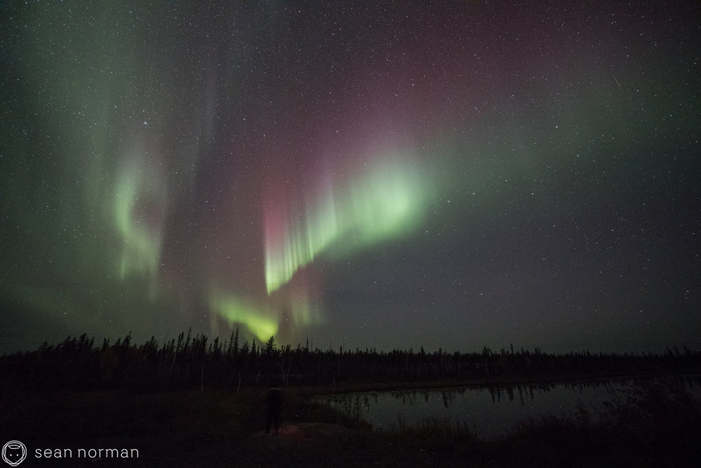 Yellowknife Aurora Photo Blog - Sean Norman Guide - 6.jpg