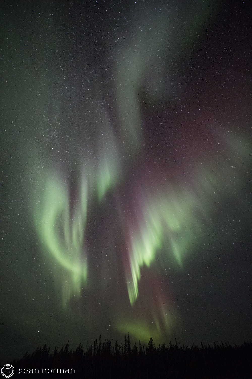 Yellowknife Aurora Photo Blog - Sean Norman Guide - 7.jpg