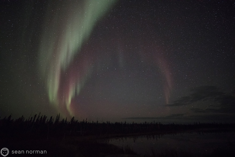 Yellowknife Northern Lights Tour - Sean Norman Blog - 4.jpg