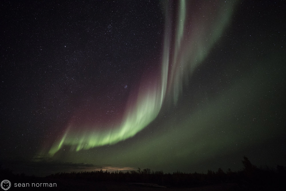 Yellowknife Northern Lights Tour - Sean Norman Blog - 7.jpg