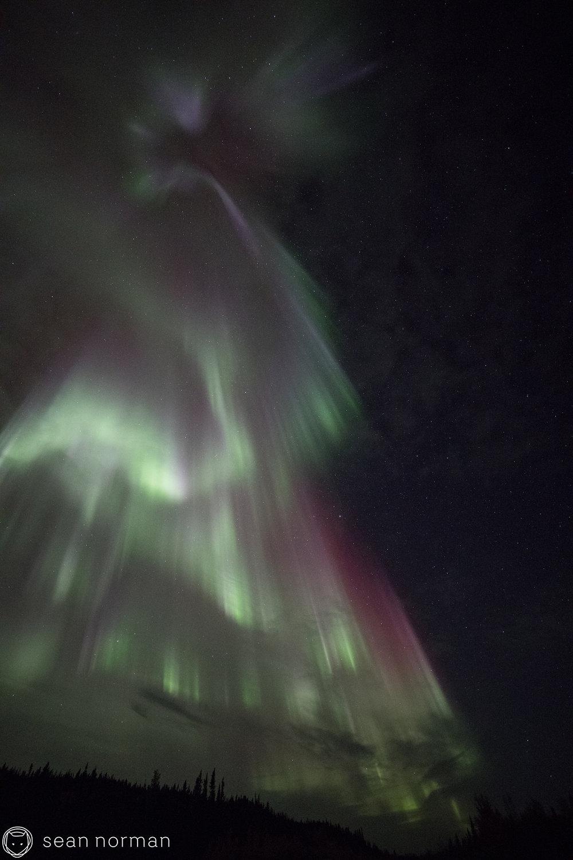 Yellowknife Aurora Guide - Sean Norman Northern Lights Blog - 4.jpg
