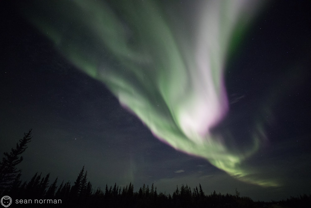 Yellowknife Northern Lights Tour - Sean Norman Blog - 1.jpg