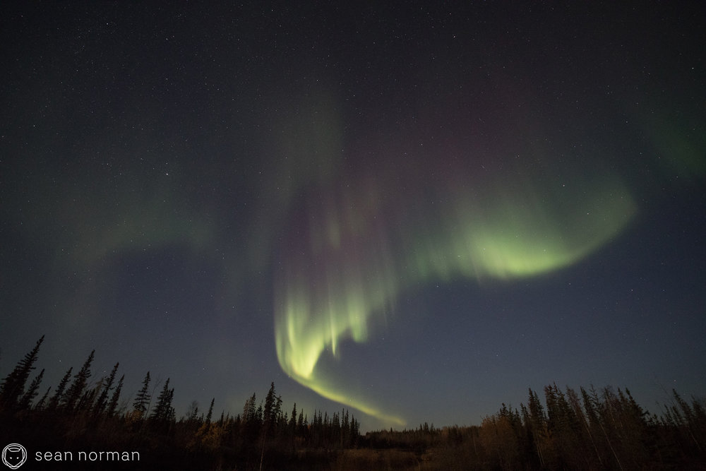 Yellowknife Aurora October - Sean Norman Northern Lights Blog - 7.jpg