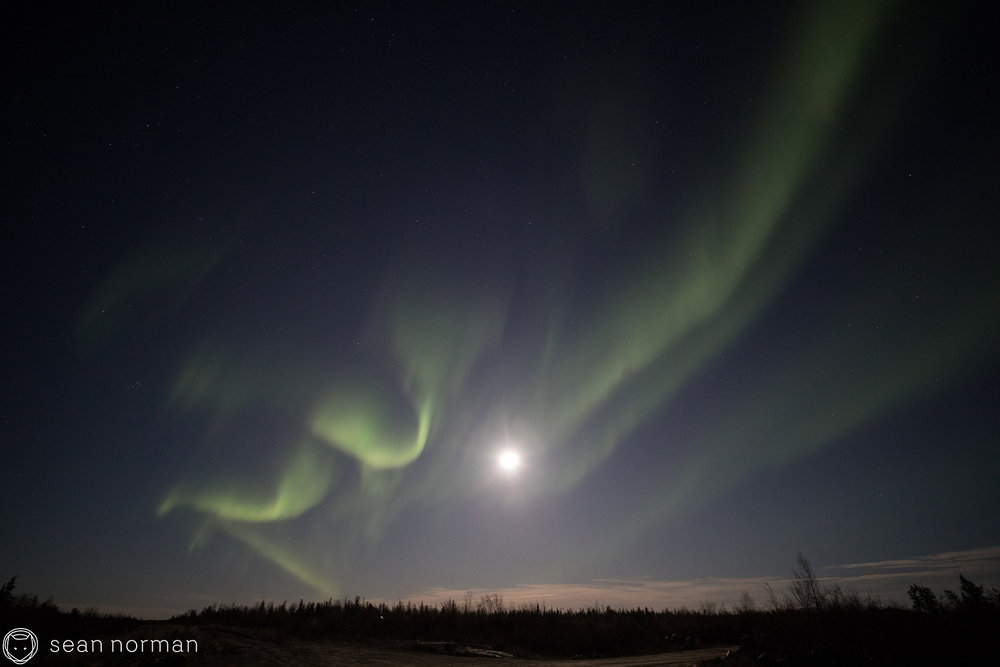Yellowknife Northern Light Viewing Tour - Sean Norman Blog - 2.jpg