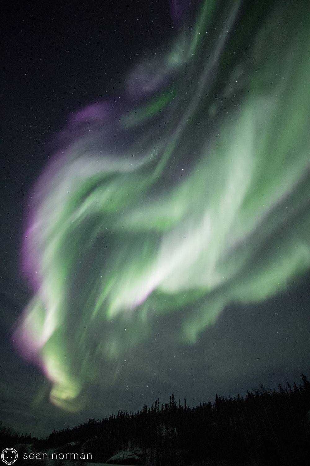 Yellowknife Aurora Photo Blog - Sean Norman Aurora Guide - 2.jpg