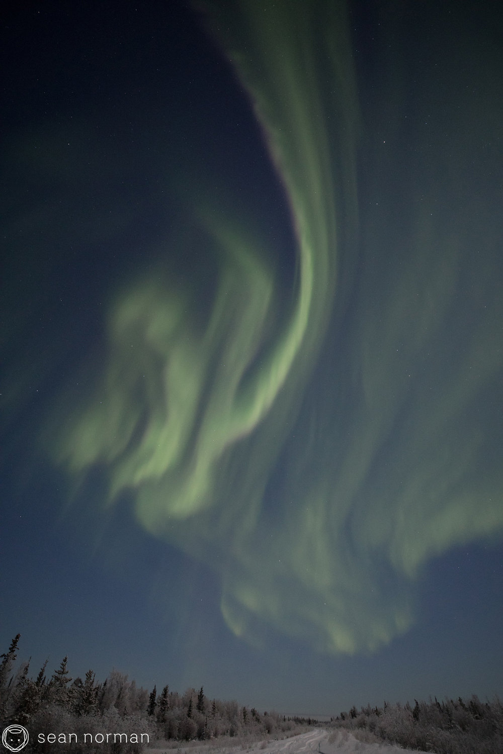 Yellowknife Aurora Chasing Tour - Sean Norman Blog - 4.jpg