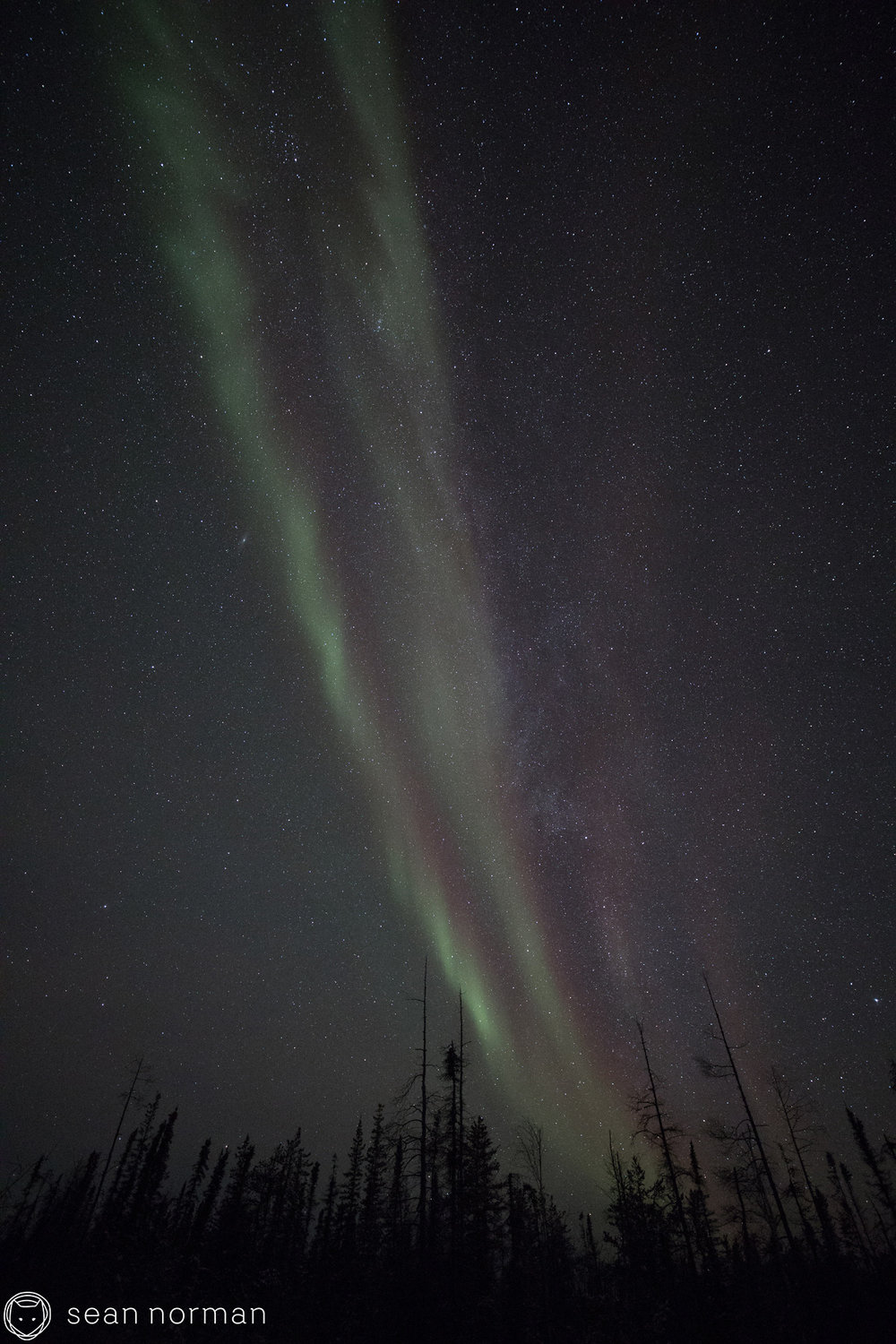 Yellowknife Aurora Tour - Sean Norman Aurora Chaser - 3.jpg