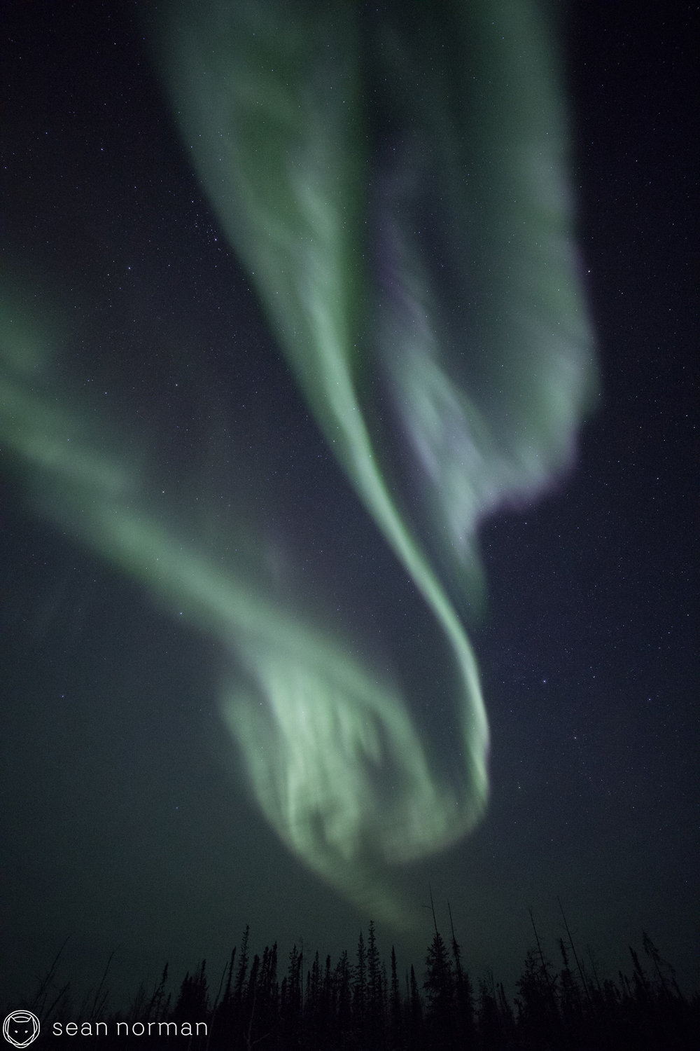 Yellowknife Aurora Tour - Sean Norman Aurora Chaser - 6.jpg