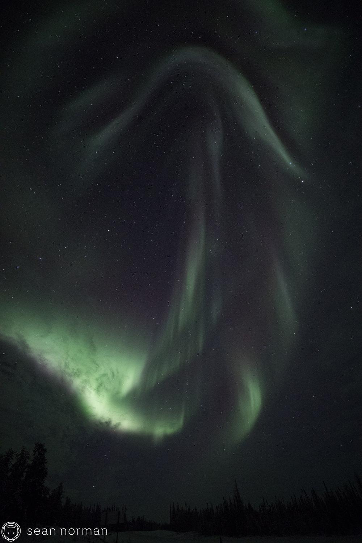 Yellowknife Northern Lights Tour - Sean Norman Aurora Chasing - 7.jpg