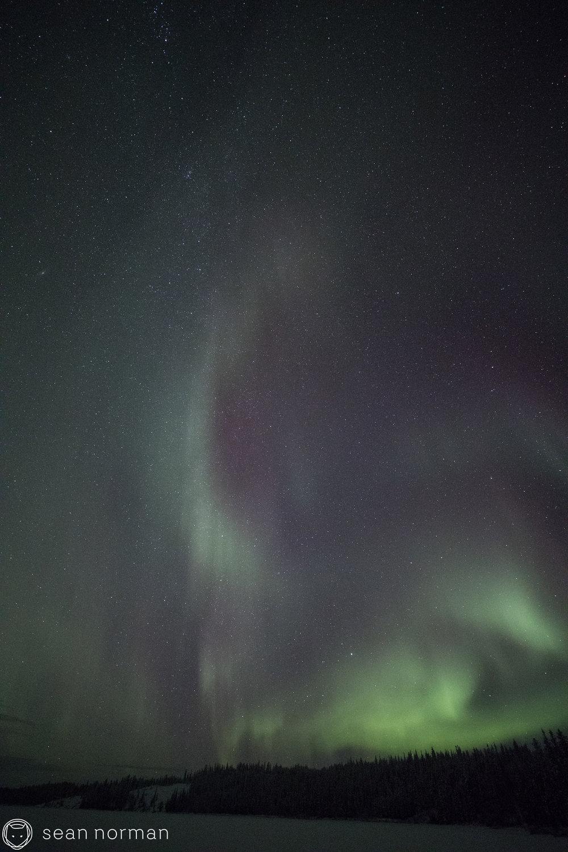 Sean Norman - Yellowknife Aurora Tour Guide - 2.jpg