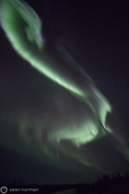 Yellowknife Aurora Hunting Tour - Sean Norman Photographer - 6.jpg