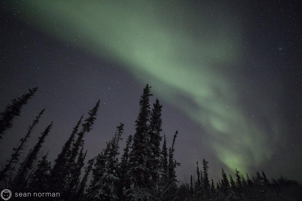 Yellowknife Aurora Tour - Sean Norman Aurora Chasing - 4.jpg