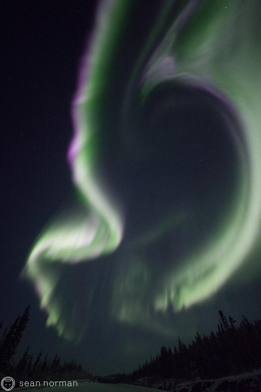 Yellowknife Aurora Tour - Sean Norman Aurora Chasing - 6.jpg