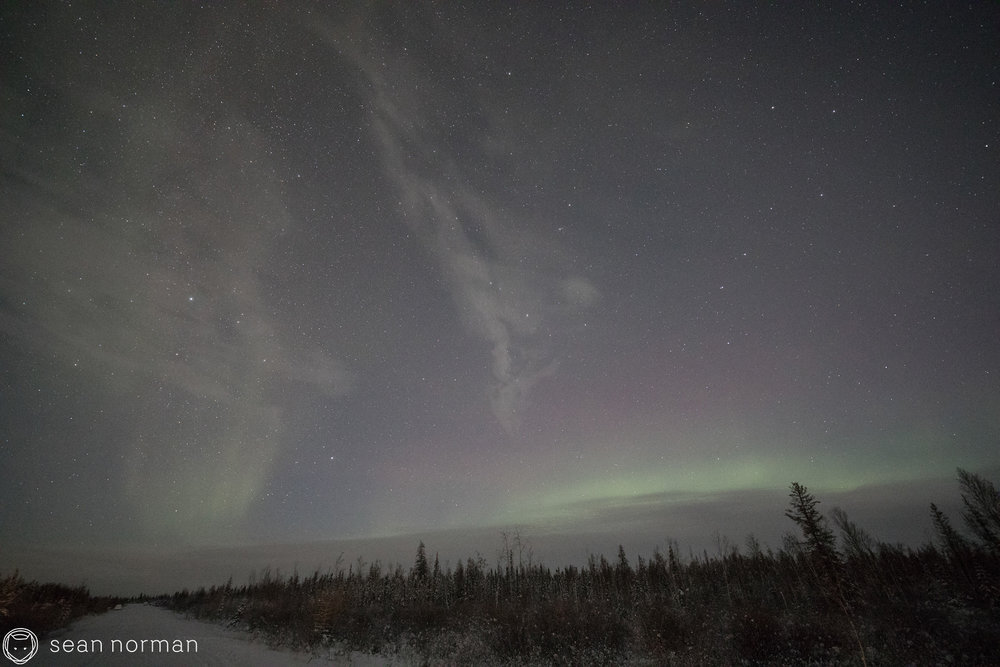 Yellowknife Northern Light Chasing Tour - Blog - 1.jpg