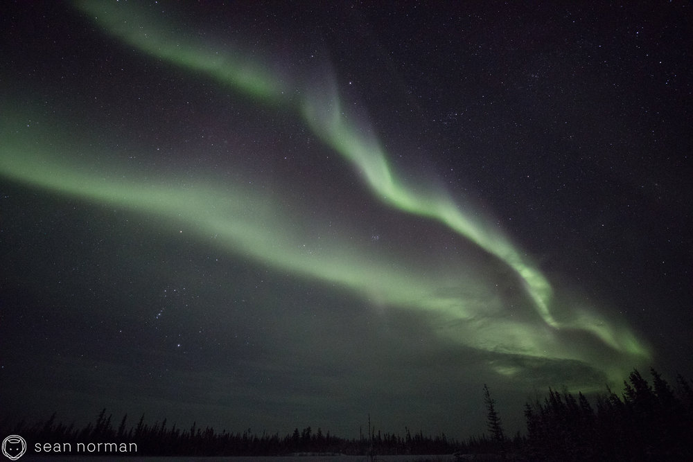 Yellowknife Northern Light Chasing Tour - Blog - 3.jpg