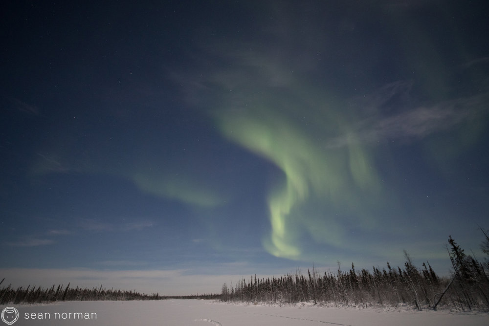 Yellowknife New Year's Eve - Aurora Chasing Tour - Sean Norman Blog - 3.jpg