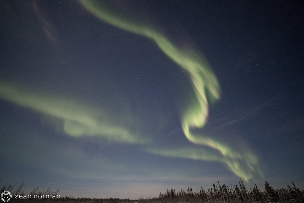 Yellowknife New Year's Eve - Aurora Chasing Tour - Sean Norman Blog - 8.jpg