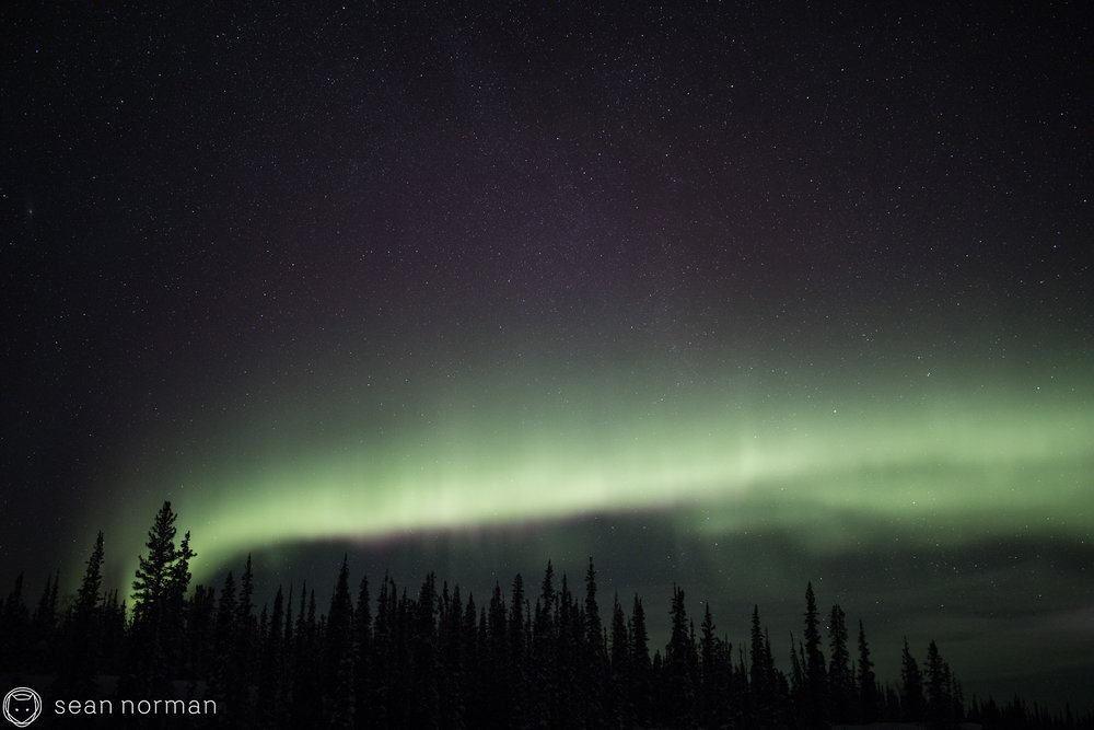 Yellowknife Aurora Tour - Sean Norman Northern Light Chaser - 5.jpg