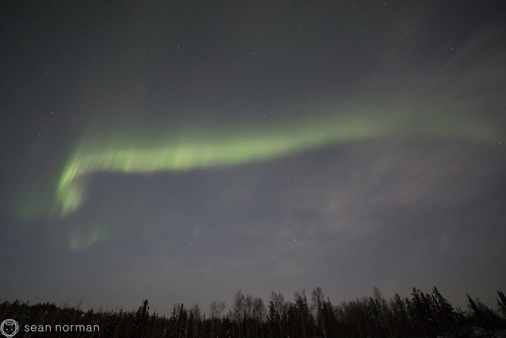 Yellowknife Aurora Chase - Polar Light Canada - 3.jpg
