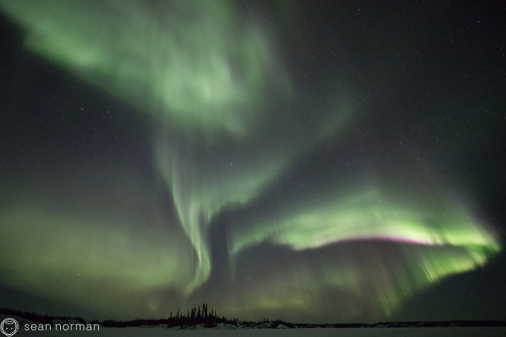 Yellowknife Canada - Best Place to See Aurora - Aurora Chaser - 11.jpg