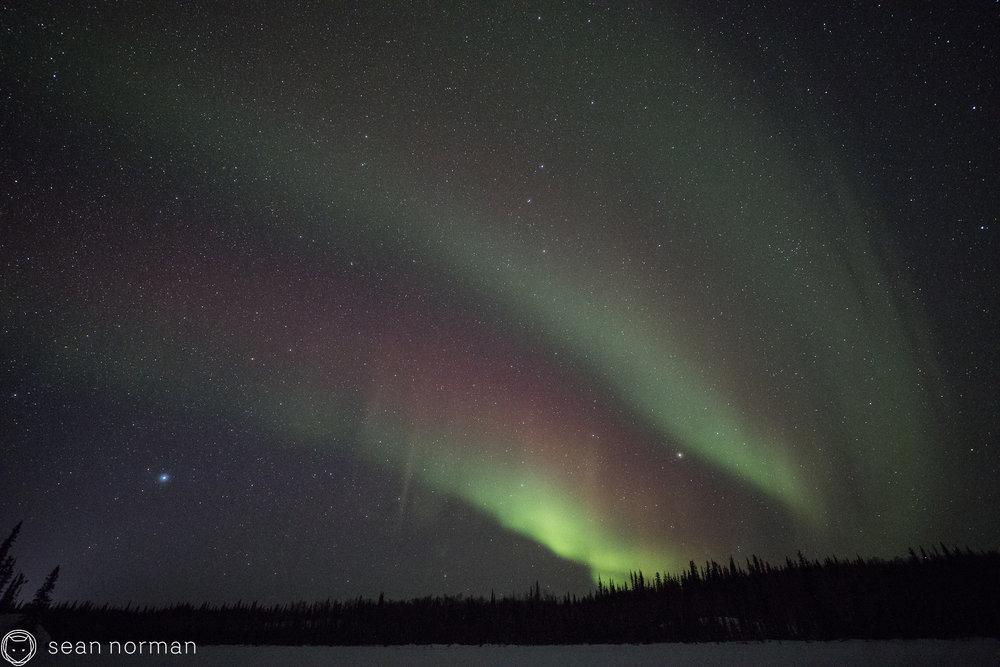 Yellowknife Canada - Northern Lights Chasing - Aurora Blog - 1.jpg