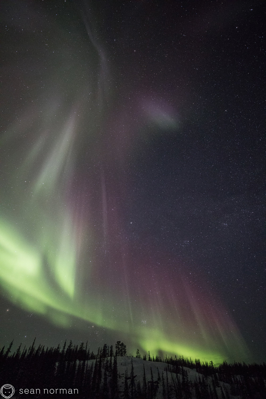 Sean Norman - Yellowknife Aurora Chaser - Tour Guide - 7.jpg