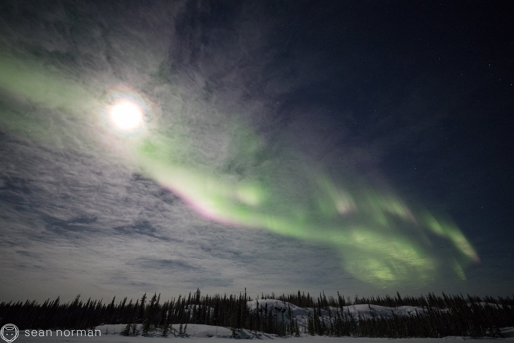 Yellowknife Aurora Borealis Chaser - Canada Aurora Tour - 1.jpg