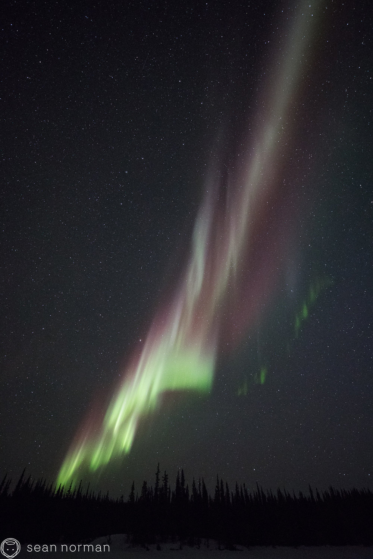Yellowknife Aurora Guide - Aurora Hunting Tour Canada - 2.jpg