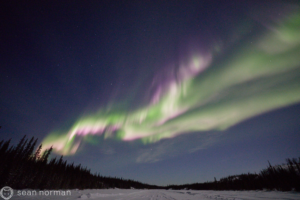 Yellowknife Aurora Guide - Aurora Photo Blog - 2.jpg