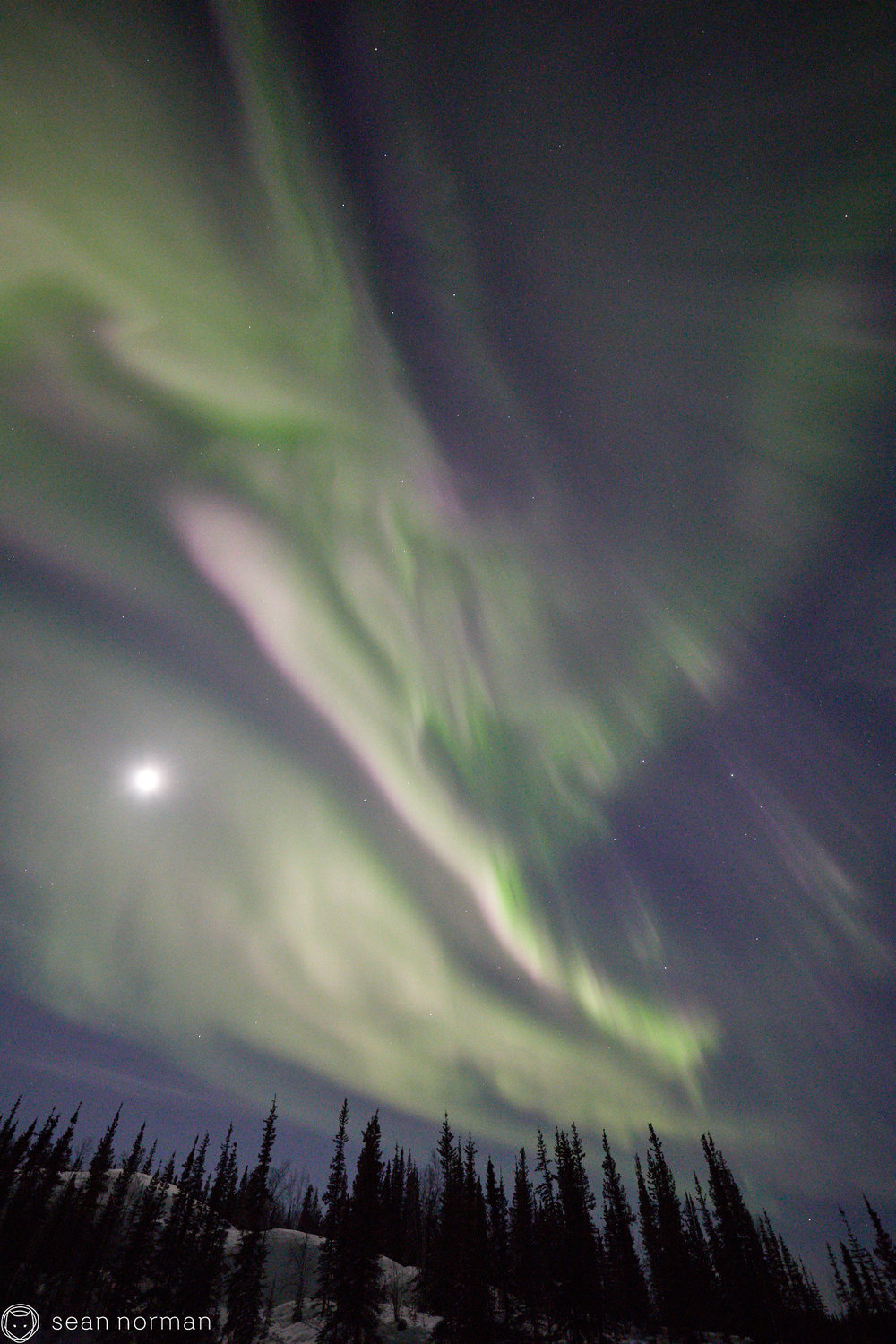 Yellowknife Aurora Guide - Aurora Photo Blog - 3.jpg