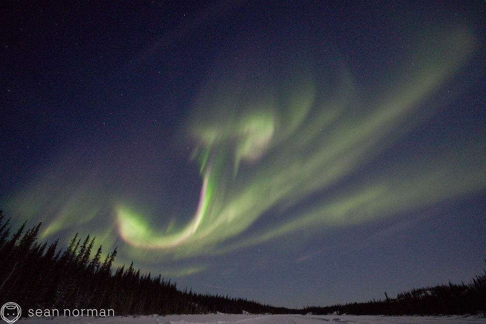 Yellowknife Aurora Guide - Aurora Photo Blog - 5.jpg